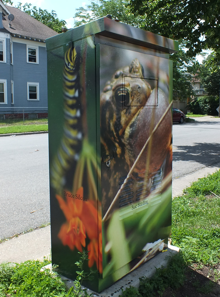 Utility box on 34th Street and Chicago Avenue