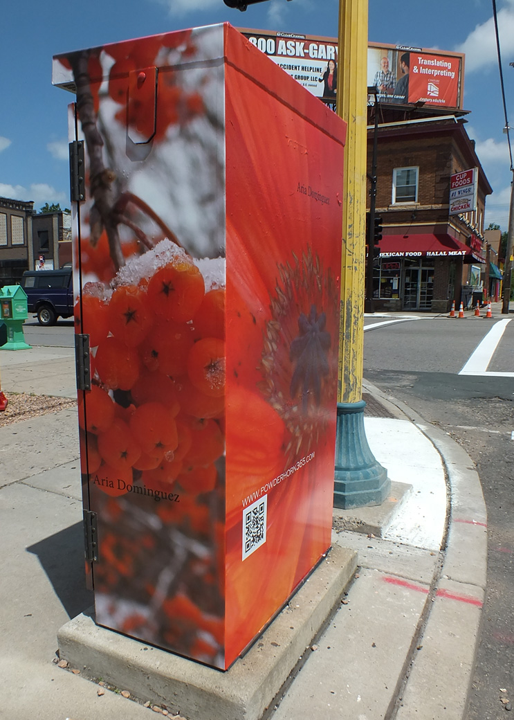 Utility Box on 38th Street and Chicago Avenue